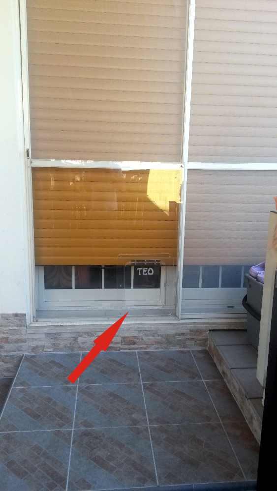 Porta basculante per cani e gatti in plexiglass dimensioni - Porta per gatti ...