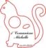 Bomboniera a forma di Gatto  in Plexiglass